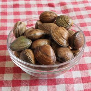 shellfish2