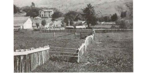 1906 fault line